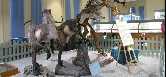 Dinosaurs at the Museum of Evolution.