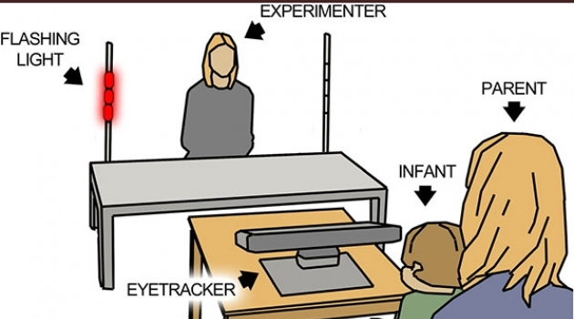 Illustration of the experiment designed to assess initiation of joint attention