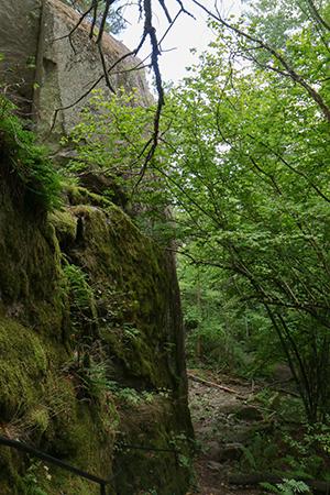 The Predikstolen cliff.