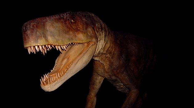 Bild av den dinosaurieliknande härskarödlan Smok wawelsk.