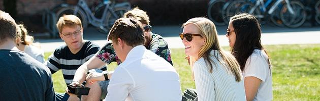 En grupp människor som sitter på en gräsmatta i solsken.