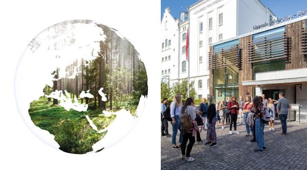Nya kurser i hållbarhet startar på Campus Gotland.