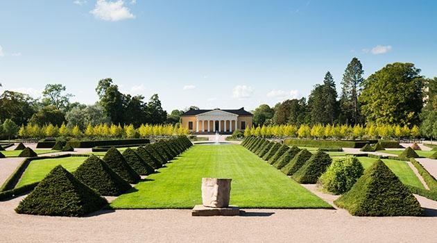 Botansika trädgården