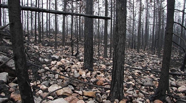 Tre månader efter branden i Västmanland.