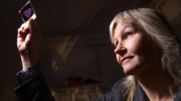 Anna Dimberg tittar på ett objektglas