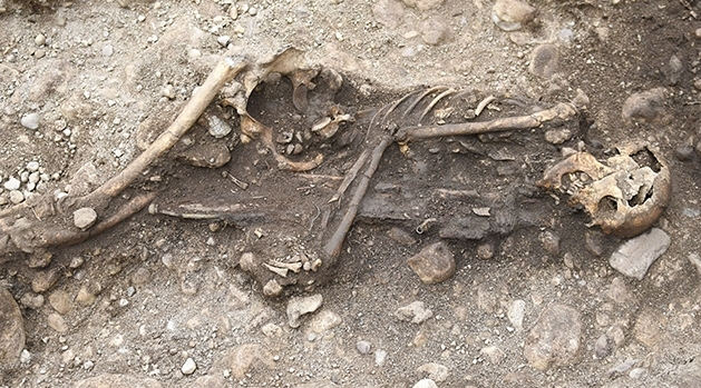 A skeleton lying on it's left side with a sword between his arms and legs.
