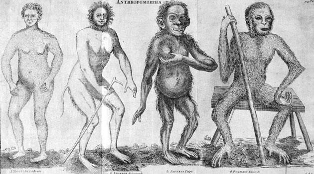 Illustration av fyra människoliknande varelser