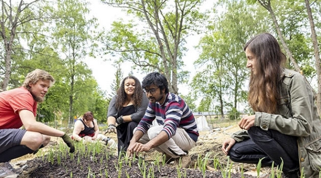 Bilden visar några av projekteldarna vid sin trädgårdsodling.