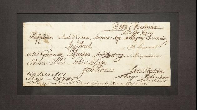 Dokument från 1745 med Carl von Linnés signatur