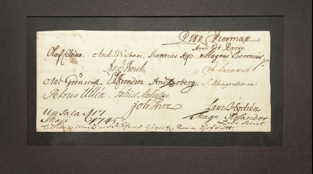 Manuscript from 1745 bearing the signature of Carl Linnaeus