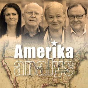 Illustration för podden Amerikaanalys.