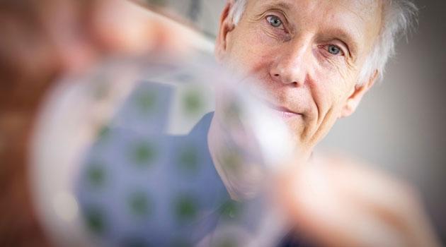 Man holding petri dish with tiny green dots