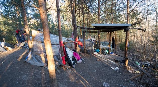 Tältläger i skogen.