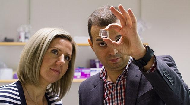 Cristina Paun och Jacinto Sá vid företaget Peafowl Solar Power