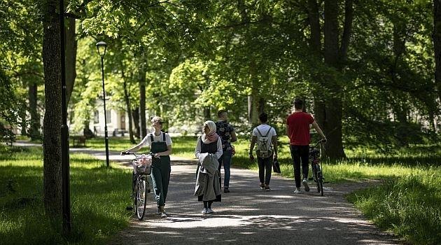 Unga kvinnor och män på gångväg i park